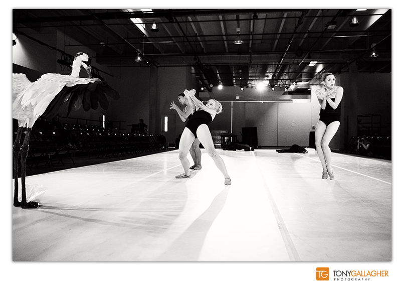 bnc-redline-ballet-photographer-tony-gallagher-denver-colorado-3