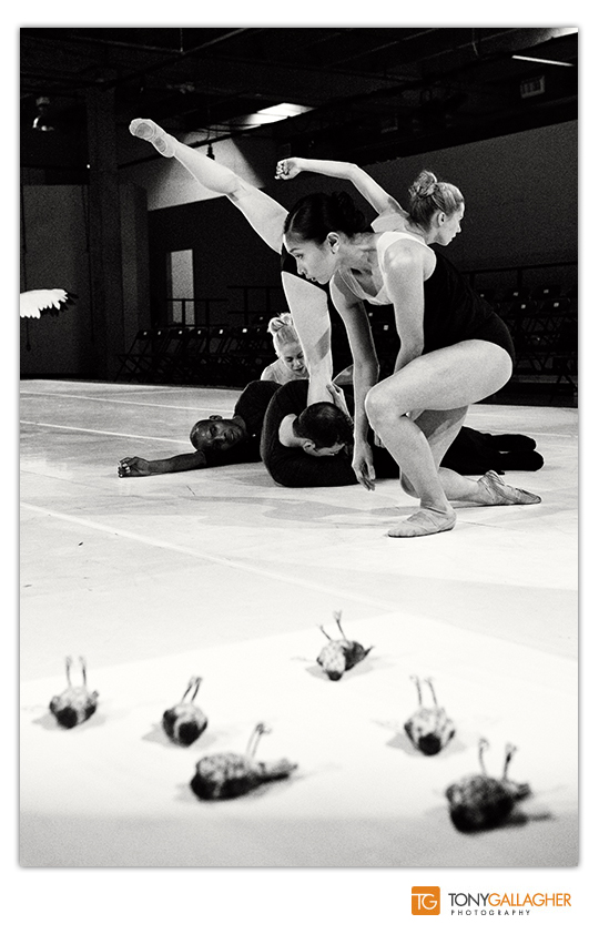 bnc-redline-ballet-photographer-tony-gallagher-denver-colorado-5
